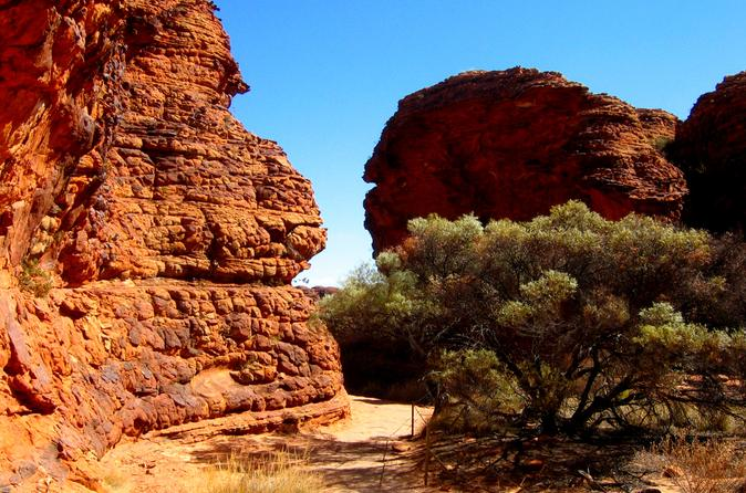 Kings Canyon Day Trip from Ayers Rock image