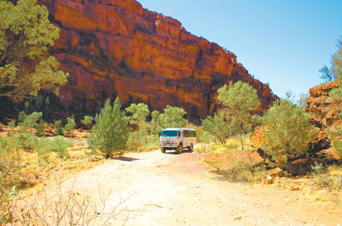 Palm-valley-4wd-tour-from-alice-springs-in-alice-springs-120382