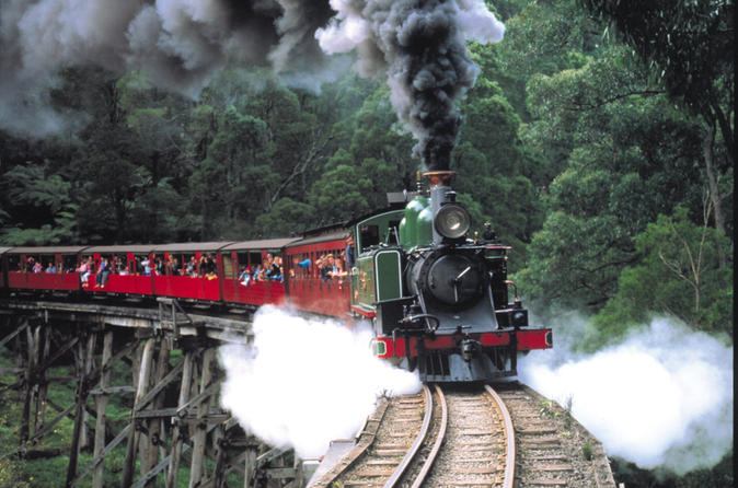 Puffing-billy-steam-train-yarra-valley-and-healesville-wildlife-in-melbourne-117286
