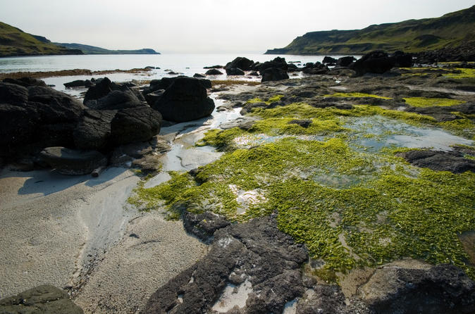 Magical-mull-iona-and-the-west-highlands-isles-in-edinburgh-143390