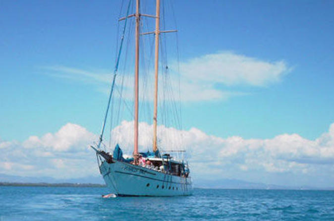 Fijian-islands-and-snorkel-full-day-whales-tale-cruise-including-in-nadi-40001