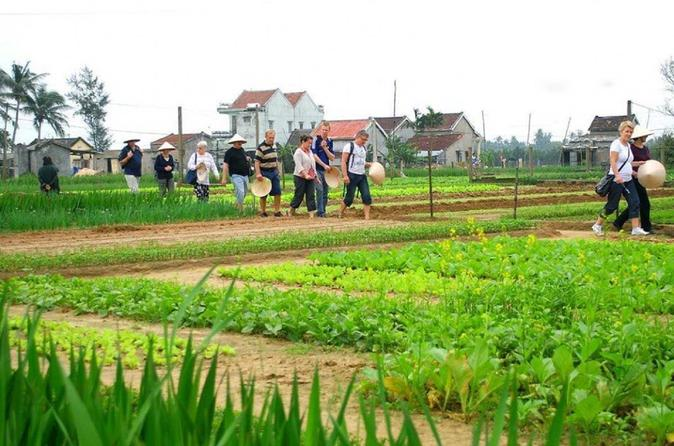 Agriculture experience Vietnamese traditional cooking classes