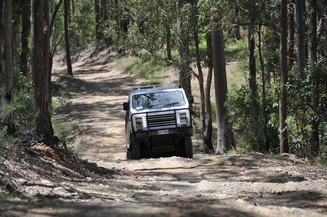 Gold-coast-lamington-national-park-and-tamborine-mountain-4wd-eco-tour-in-gold-coast-119584