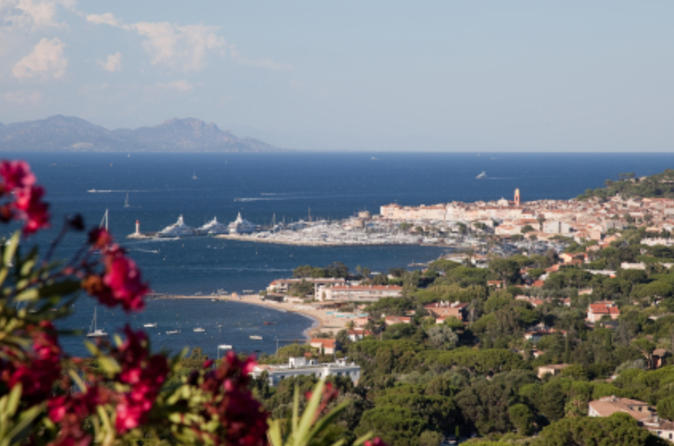 St-tropez-small-group-day-trip-from-cannes-in-cannes-50687