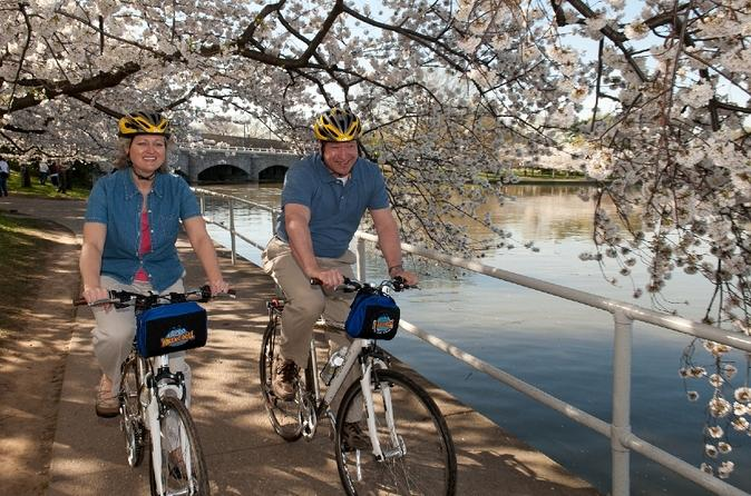 Viator-exclusive-mt-vernon-trail-and-washington-dc-cherry-blossom-in-washington-d-c-132244