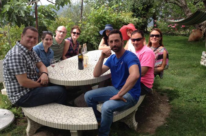 8-Hour Small-Group Provence Wine Tour from Nice