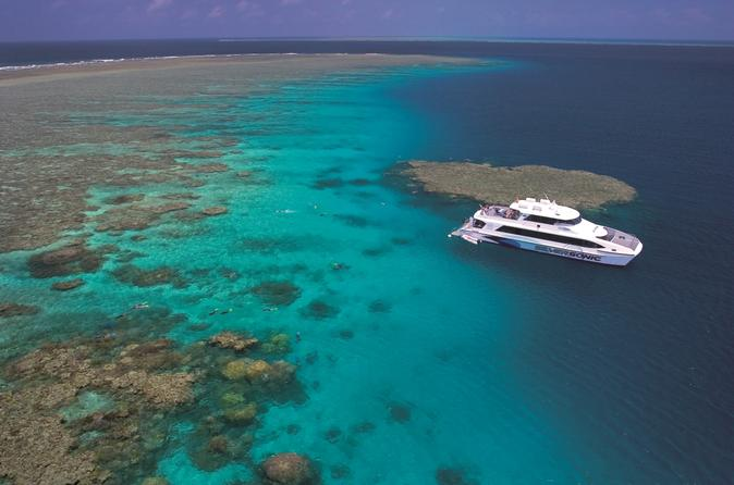 Outer-great-barrier-reef-dive-and-snorkel-cruise-from-port-douglas-in-port-douglas-147633