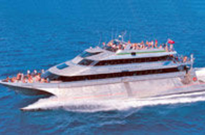 Outer-great-barrier-reef-snorkel-cruise-from-port-douglas-in-port-douglas-39394