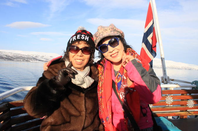 Fjord Cruise with Arctic Wildlife Sightings from Tromso