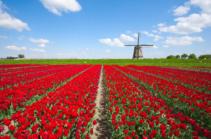 Holland-in-one-day-sightseeing-tour-in-amsterdam-115758