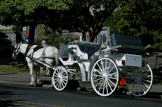 Beacon-hill-park-carriage-tour-in-victoria-147857