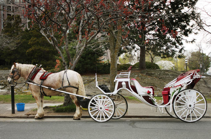 The-royal-carriage-tour-in-victoria-151794