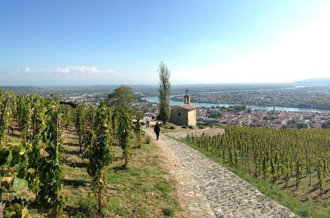 Full Day Cotes du Rhone Wine Tour with Wine and Chocolate Tasting from Lyon