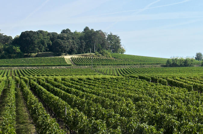 Saint-Emilion Day Trip from Bordeaux: Chateau Wine Tastings and Lunch