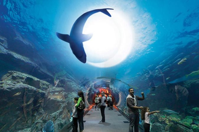 Dubai City tour and Dubai Mall Activities with Burj Khalifa
