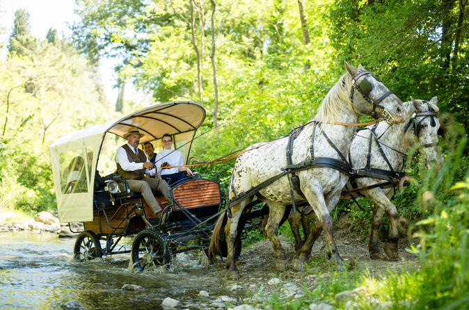 Throwback carriage tour: carriage horse riding and lunch