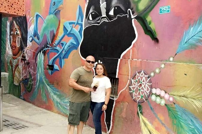 Private Half-Day Medellín Graffiti Tour Including Metrocable