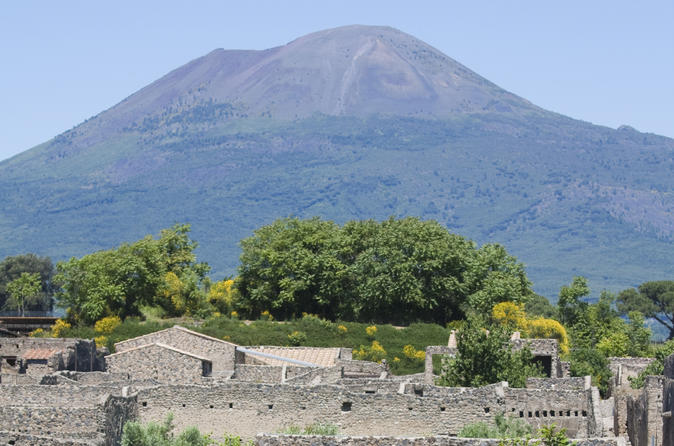 Naples City and Pompeii Half-Day Sightseeing Tour from Sorrento