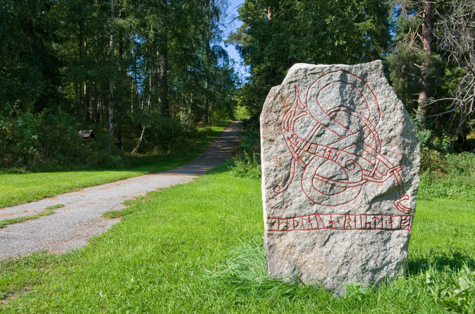 Viking-history-half-day-tour-from-stockholm-in-stockholm-145738