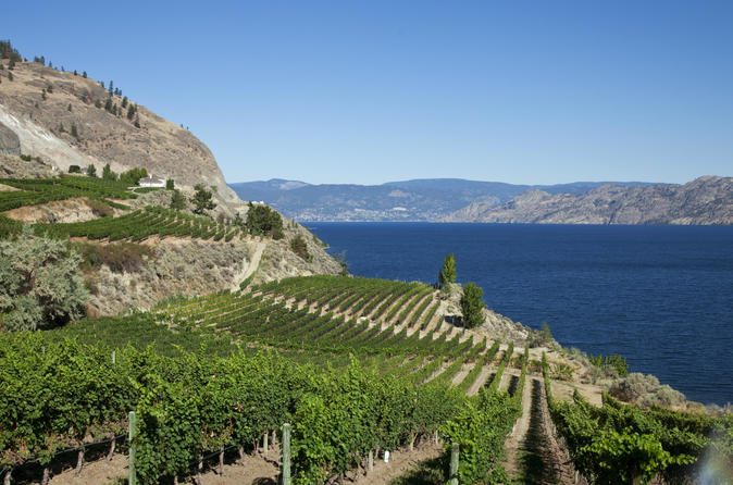 4-day-tour-to-kelowna-from-vancouver-including-okanagan-winery-tour-in-vancouver-152041
