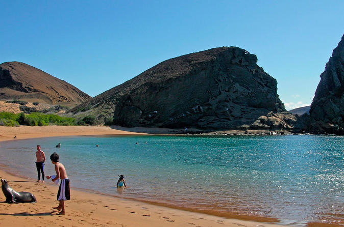 Fall in love with Galapagos in 4 D 3 N in Santa Cruz-with Full Days Tours!
