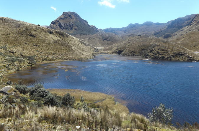Cajas National Park Day Tour