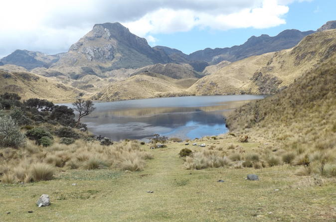 Cajas National Park Half Day Tour