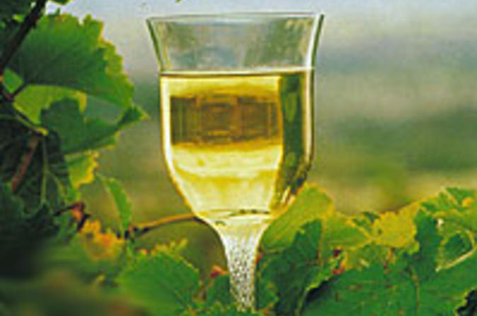 2-day-margaret-river-wine-experience-tour-from-perth-in-perth-26895