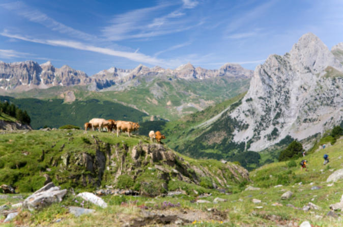 Pyrenees Mountains Private Day Trip from Barcelona