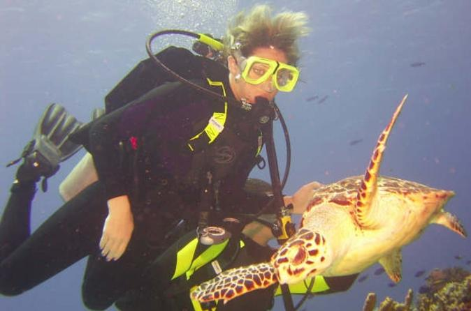 Padi-certification-in-cozumel-3-day-open-water-diving-course-in-cozumel-36469