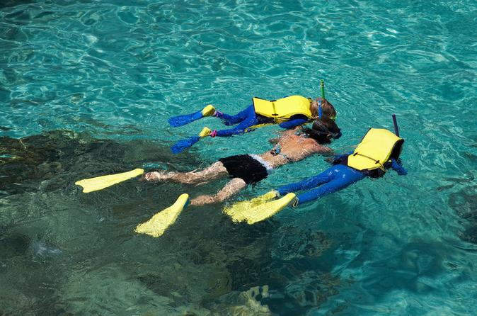 Snorkeling-tour-and-cozumel-beach-party-in-cozumel-136590
