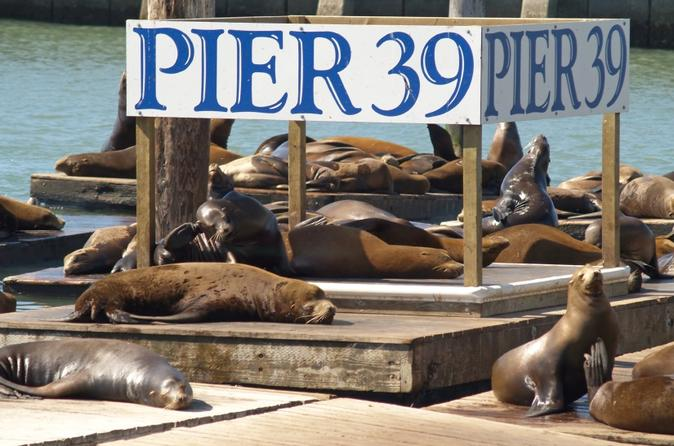 Pier-39-attraction-pass-in-san-francisco-117232