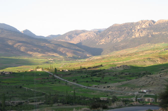Middle Atlas Mountains, Cedar Forest and Azrou Day Trip from Fez