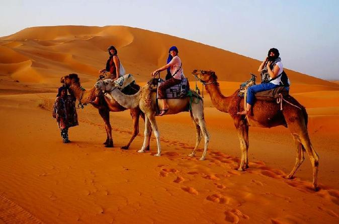 Overnight in a Berber Tent and  camel trek