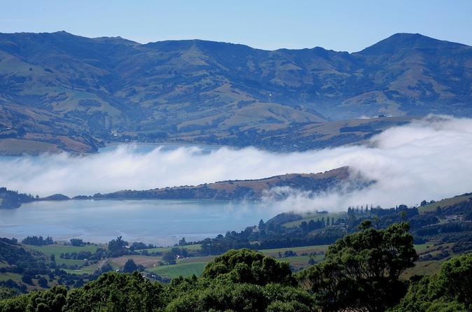 Akaroa-harbour-and-banks-peninsula-eco-marine-harbour-cruise-small-in-christchurch-131822