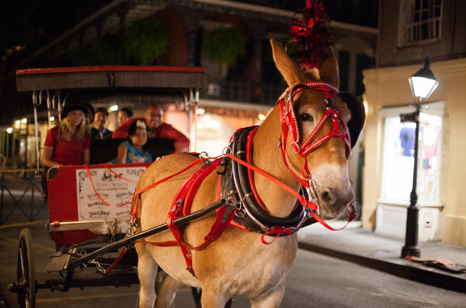Haunted History of New Orleans Carriage Small Group Tour
