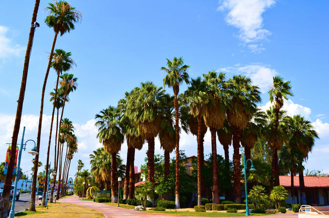 Top museums in palm springs triphobo for Celebrity tours palm springs california