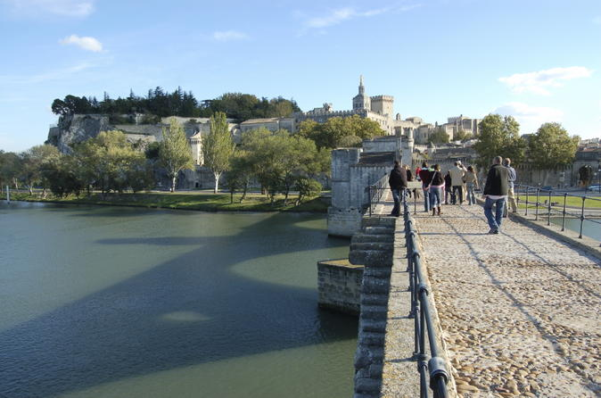 Private-tour-avignon-and-chateauneuf-du-pape-day-trip-from-marseille-in-marseille-126812