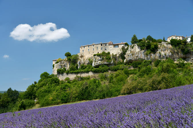 Provence-lavender-small-group-half-day-trip-in-avignon-150999