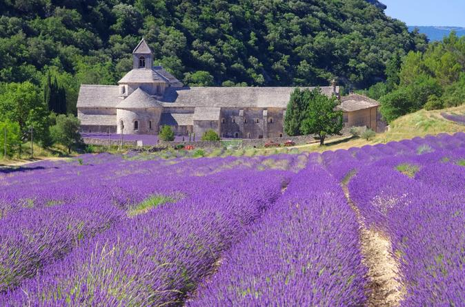 Small-group-provence-and-lavender-museum-day-trip-from-avignon-in-avignon-150996