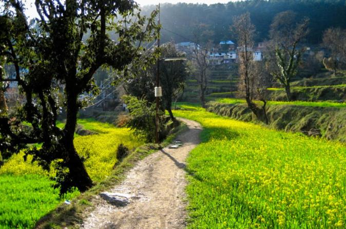Day hike around Dharamkot and Bahl Village