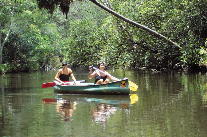 Noosa-everglades-canoe-trip-with-barbecue-lunch-in-noosa-158645