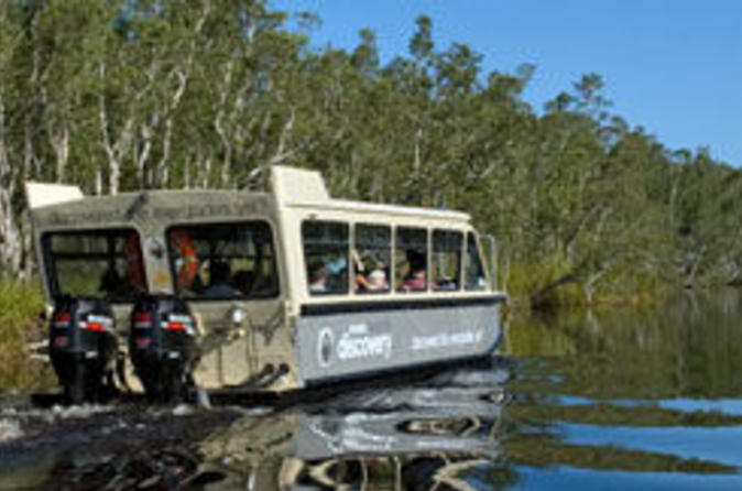 Noosa-river-and-everglades-afternoon-tea-cruise-in-noosa-41603