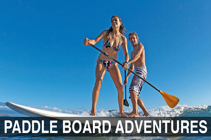 Boat Ride with Mangrove Paddle Boarding Tour