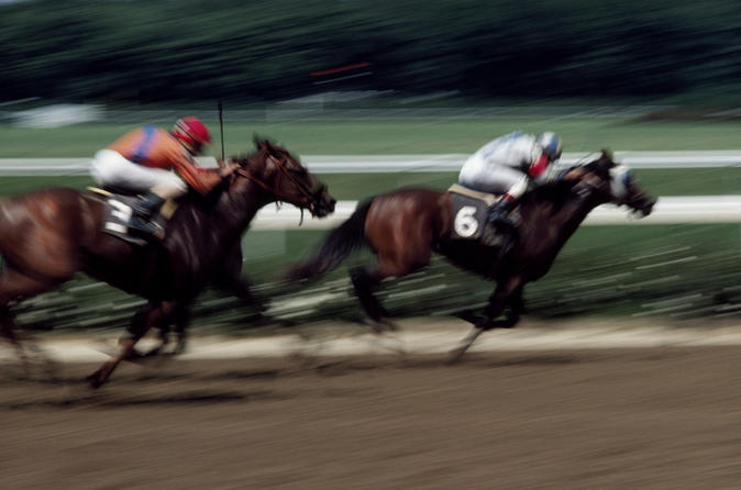 Singapore-turf-club-horse-racing-with-vip-lounge-access-in-singapore-146533