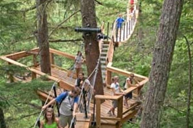 Treetop-canopy-walk-in-whistler-in-whistler-37623