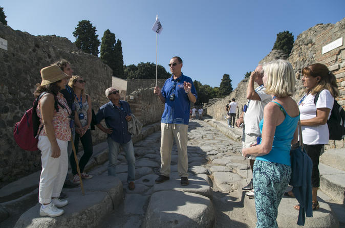 Pompeii and Mt Vesuvius Tour from Naples with Lunch and Wine Tasting by Private Coach