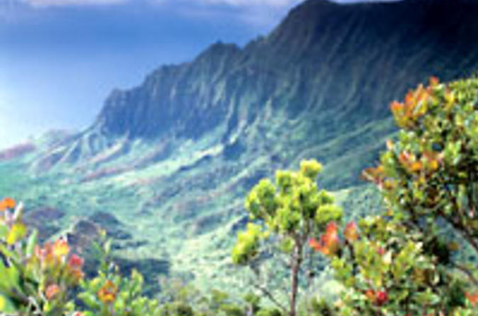 Hidden-valley-falls-kayak-and-kauai-hike-adventure-in-kauai-33262
