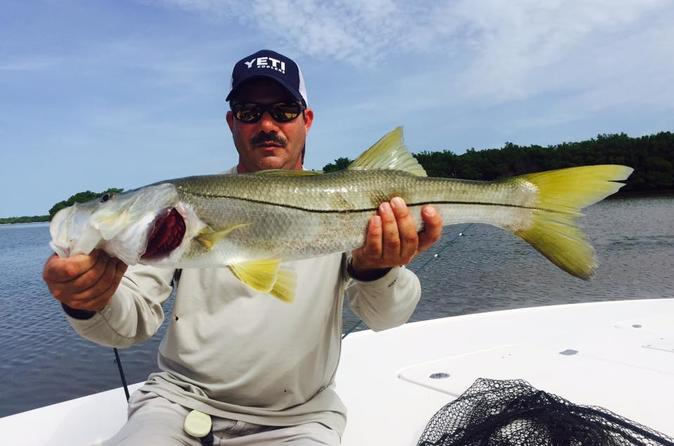 Tours activities classic vacations for Charter fishing tampa