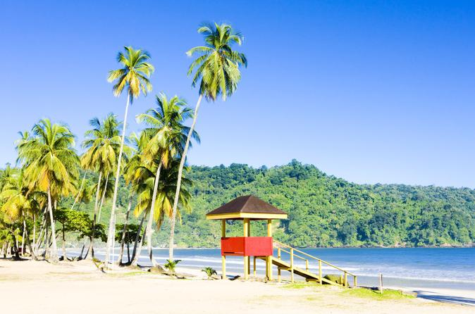 Trinidad-highlights-and-scenic-drive-tour-in-port-of-spain-152063